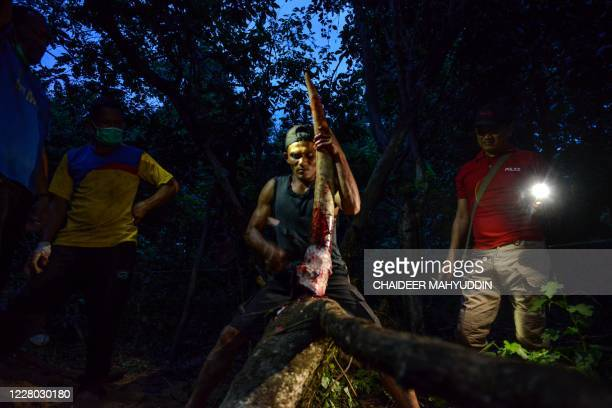 TOPSHOT A police personnel watches a forest ranger cleaning a tusk of a dead male Sumatran elephant as veterinarians and mahouts conduct an autopsy...