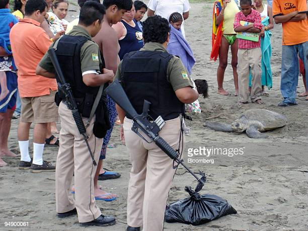 Police protect a Golfina turtle making its way back to the ocean after laying eggs on the beach in Acapulco, Mexico on August 25, 2005. A plastic bag...