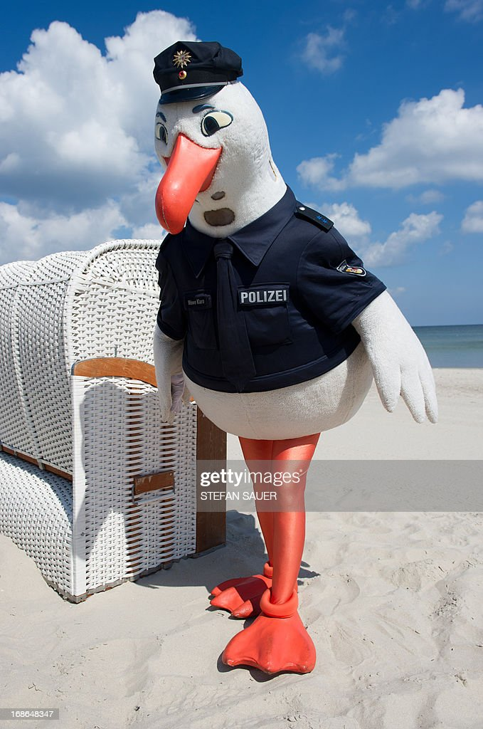 Police Seagull Klara Poses Next To A Beach Chair On The Baltic Sea News Photo Getty Images