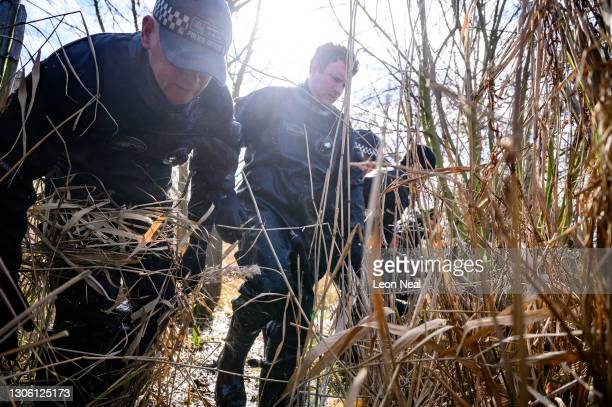 Police search teams work their way through the reeds in Mount Pond on Clapham Common as the hunt for missing woman Sarah Everard enters its fifth...