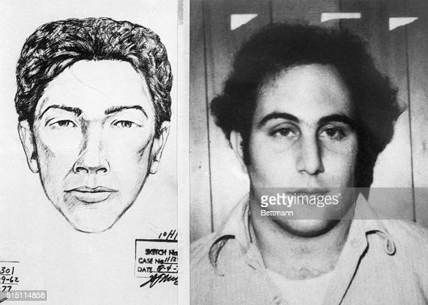 A police sketch of the suspect in the Son of Sam killings and the official police headshot of the murderer David Berkowitz
