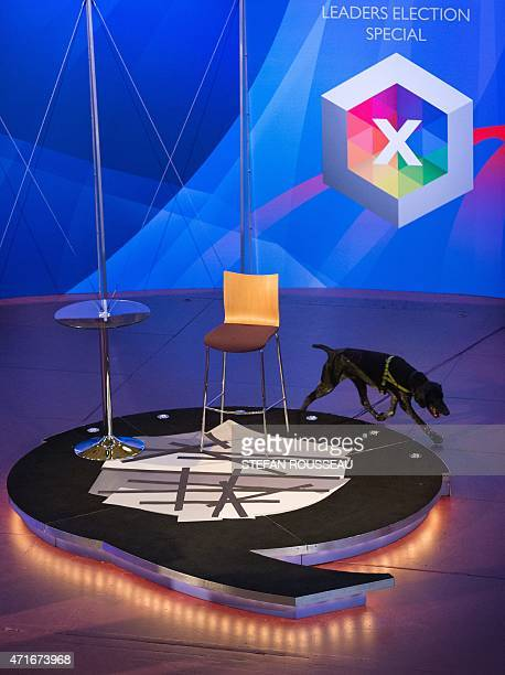 A police sniffer dog checks the stage of the BBC Question Time Election Leaders Special television show at Leeds Town Hall in Leeds northern England...