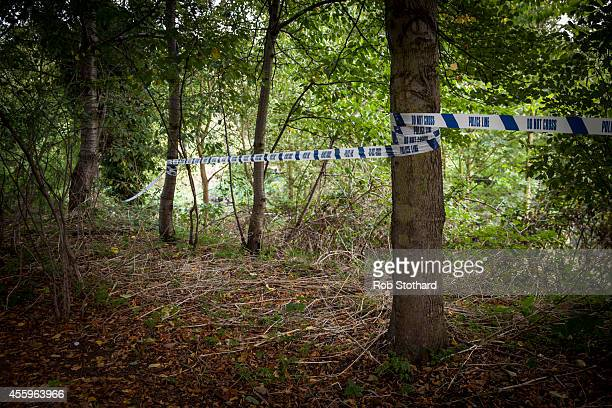Police tape marks off an area along the bank of the River Brent where police are searching for missing schoolgirl Alice Gross on September 23 2014 in...