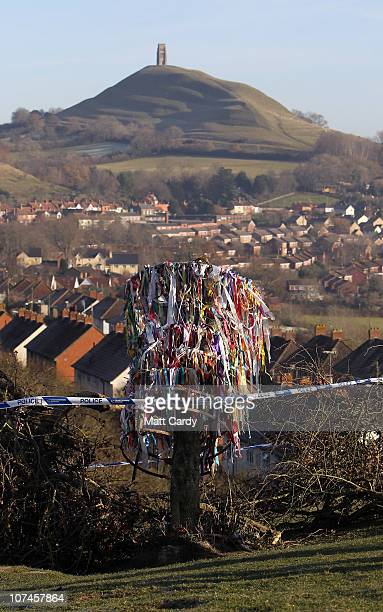 Police tape marks off an area around the vandalised Holy Thorn tree that was cut down overnight on Wearyall Hill on December 9 2010 in Glastonbury...