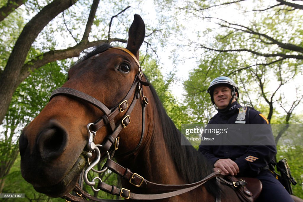 Policeman in Central Park : Stock Photo