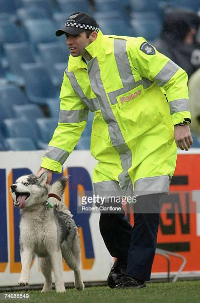 Policeman removes a dog from the field during the round 10 VFL match between the Geelong Cats and the Tasmania Devils at Skilled Stadium on June 17,...
