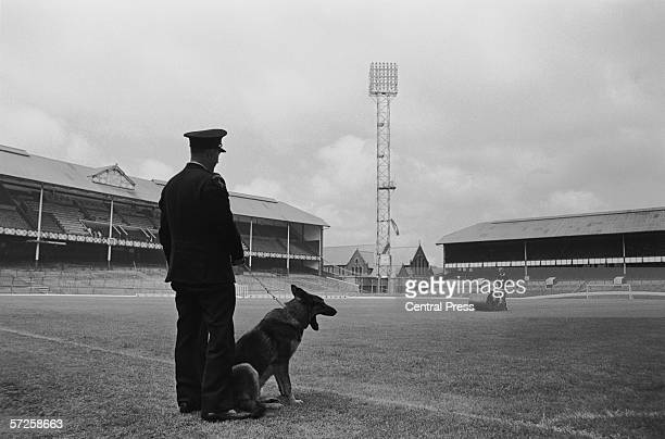 Policeman Sid Palmer and his Alsatian Cindy watching the groundsman prepare the Goodison Park pitch during a World Cup security patrol before the...