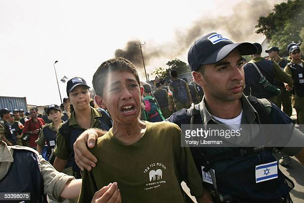 Policemen arrest a young Israeli settler evacuated from the settlement of NeveDekalim on August 17 2005 in the southern Gaza Strip Thousands of...