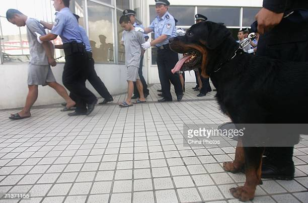 Policemen guard gang criminals to attend a public sentence on July 5 2006 in Shenzhen of Guangdong Province China Twelve gang members received their...