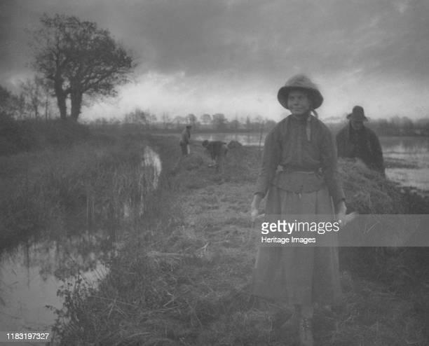 Poling the Marsh Hay, 1886. Creator Paul Gavarni .