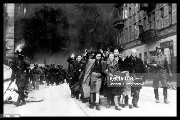 Polish Jewish resistance women captured after the destruction of the Warsaw Ghetto in 1943 Among them was Malka Zdrojewicz who survived Majdanek...
