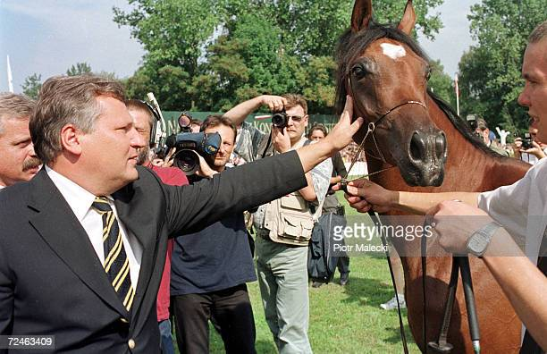 Polish President Aleksander Kwasniewski attempts to pet a horse August 12 2000 while visiting the annual Arabian horse auction in Janow Podlaski...