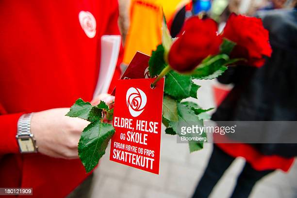 A political campaigner for the Norwegian Labour Party hands out red roses to passing pedestrians on a city street ahead of national elections in...
