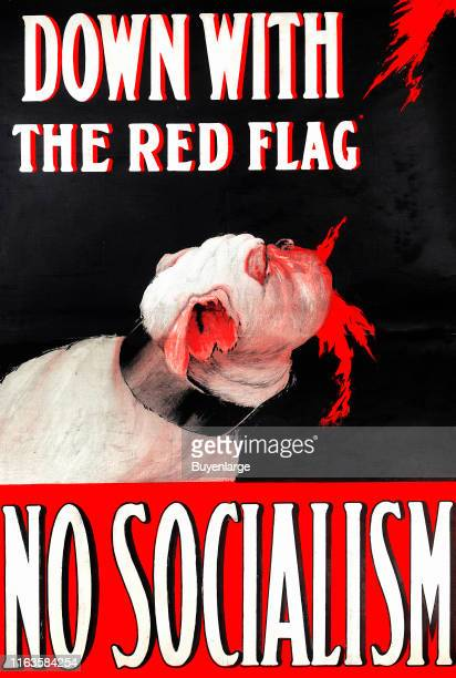 Political poster under the headline 'Down With the Red Flag No Socialism' depicts a bulldog as a representative of the Liberal Unionist position as...