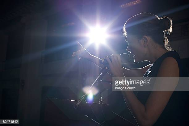 a politician giving a speech - leanincollection stock pictures, royalty-free photos & images