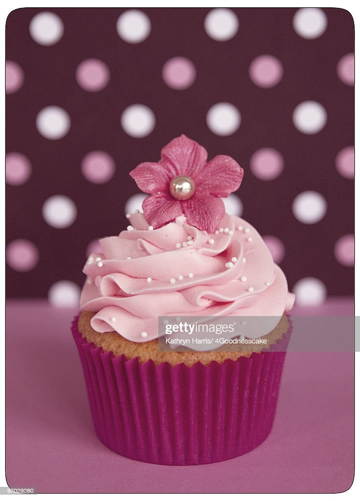 Polka Dot Cupcake : Stock Photo