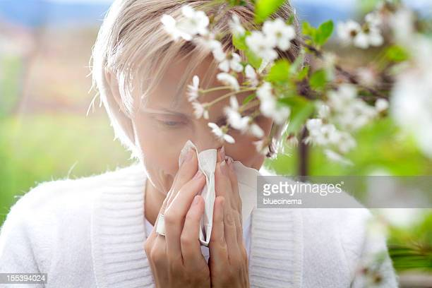pollen allergy - allergies stock photos and pictures