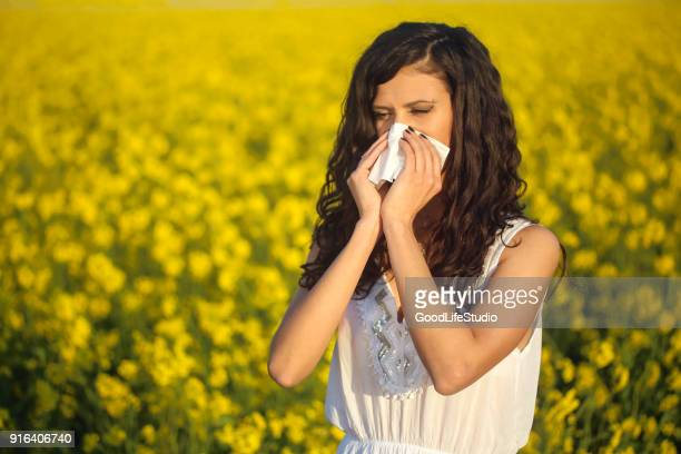 pollen allergy - allergy stock pictures, royalty-free photos & images