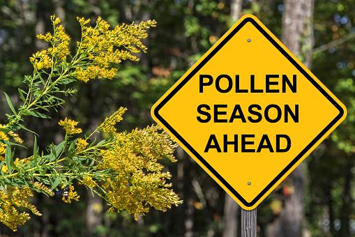 Polllen Season Ahead Warning 897497892