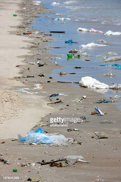 Polluted beach covered by washed up garbage.