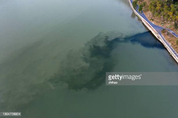 polluted waters - kontaminierung stock-fotos und bilder