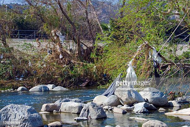 Pollution in the Los Angeles River, USA. Plastic Bags left from runoff from recent rains, Glendale Narrows, Stop on Folar's tour of the LA River, Los...