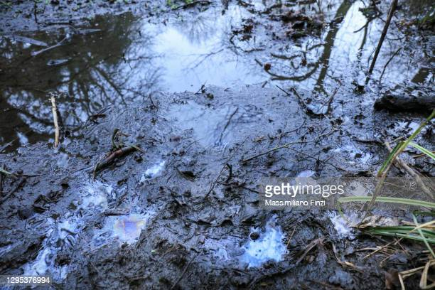 pollution in the river water with the oily surface in the mud - kontaminierung stock-fotos und bilder