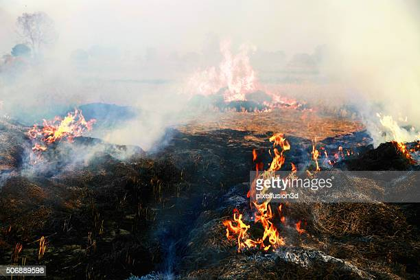 pollution - burning stock pictures, royalty-free photos & images