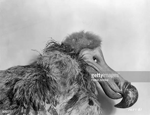 Polly Moran as the Dodo Bird in Paramount's 'Alice In Wonderland' directed by Norman Z McLeod