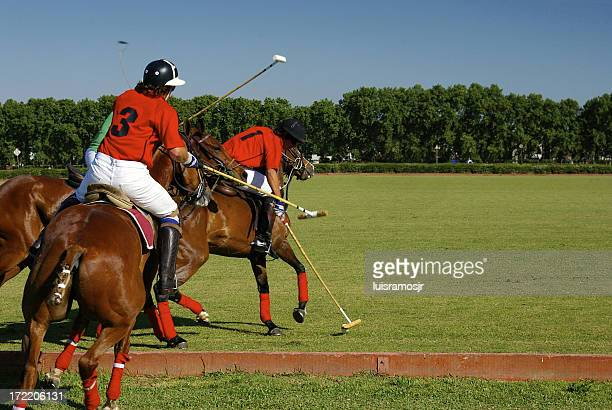 polo action - polo stock pictures, royalty-free photos & images