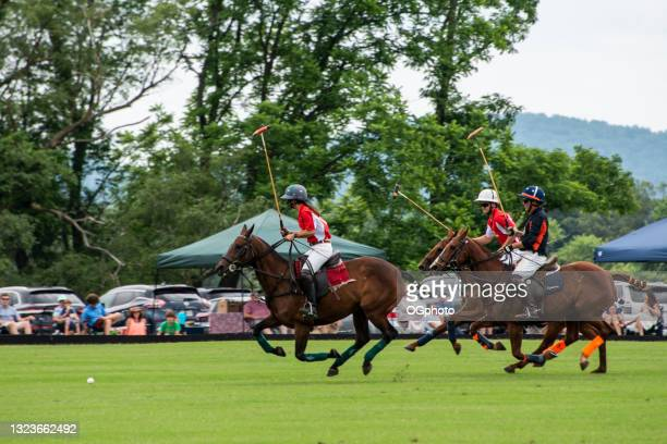 polo match - ogphoto stock pictures, royalty-free photos & images