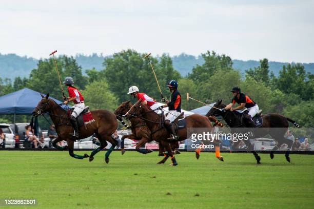 polo match.  players competing for the ball. - ogphoto stock pictures, royalty-free photos & images