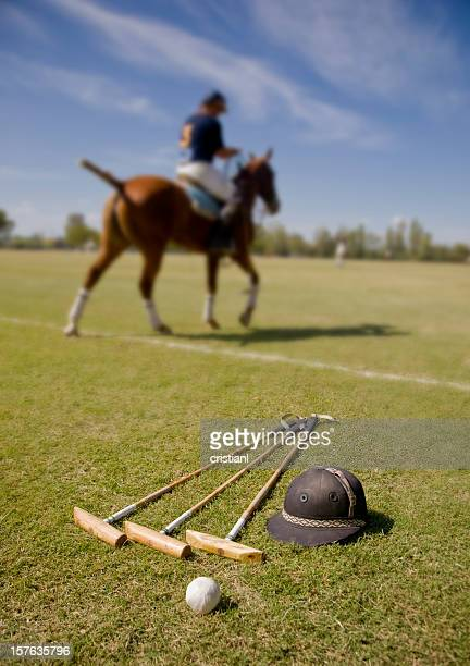 polo - polo stock pictures, royalty-free photos & images