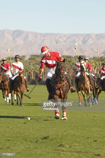 polo player advancing ball - polo stock pictures, royalty-free photos & images