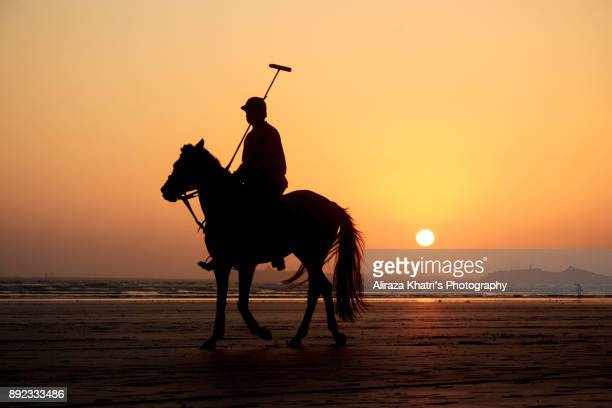 Polo player and horse silhouette sunset