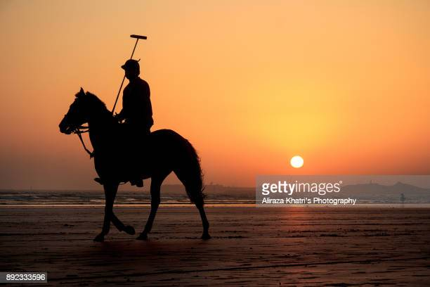 polo player and horse silhouette sunset - polo stock pictures, royalty-free photos & images