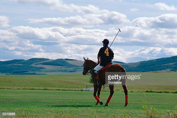 Polo player on horse with hills in distance
