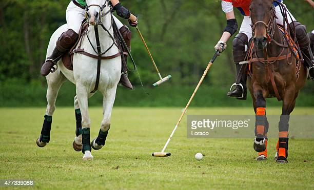 Polo players challenging for the ball