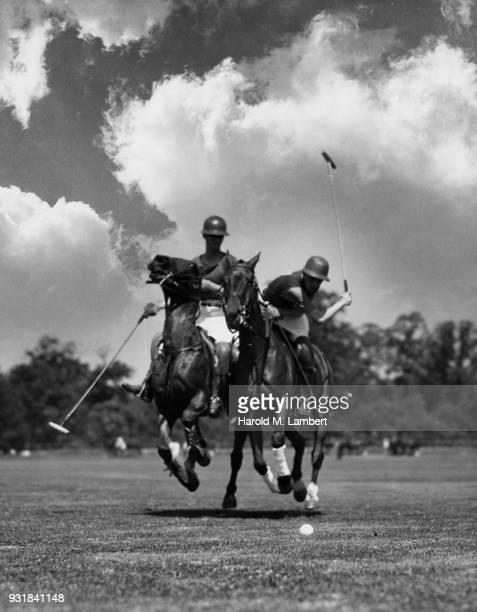 Polo players playing polo
