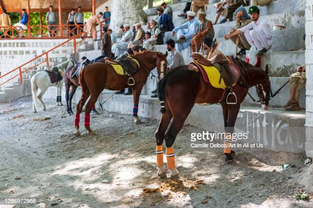Polo ponies waiting for the game to begin on Mai 25 2016 in Chitral Khyber Pakhtunkhwa Pakistan
