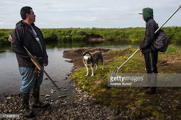 Polo the dog helps look for ducks hunting expedition on Nelson Island on July 2 2015 near Newtok Alaska Newtok has a population of approximately of...