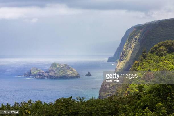 Polulu Valley Vista on Big Island Hawaii