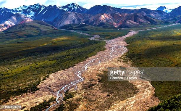 polychrome pass - tundra stock pictures, royalty-free photos & images