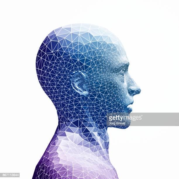 Polygon head