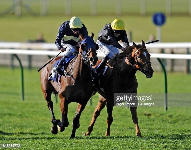 Polygon ridden by Michael Hills goes onto win The TRM Severals Stakes ahead of Dorcas Lane ridden by Ted Durcan in second during the October Day at...
