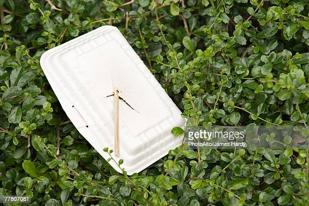 polystyrene container and chopsticks littering bushes - polystyrene stock pictures, royalty-free photos & images