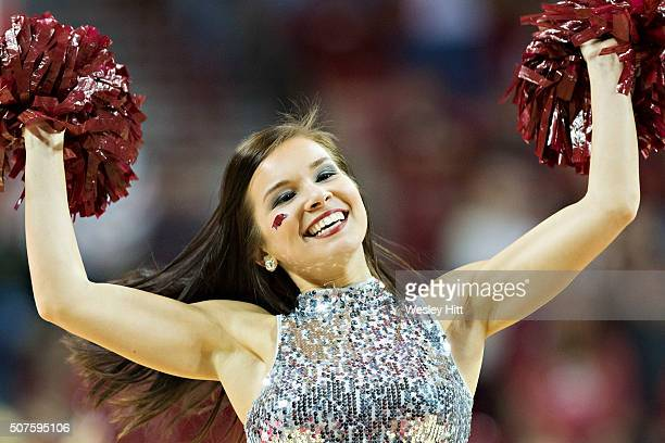 Pom Squad member of the Arkansas Razorbacks performs during a game against the Texas A&M Aggies at Bud Walton Arena on January 27, 2016 in...