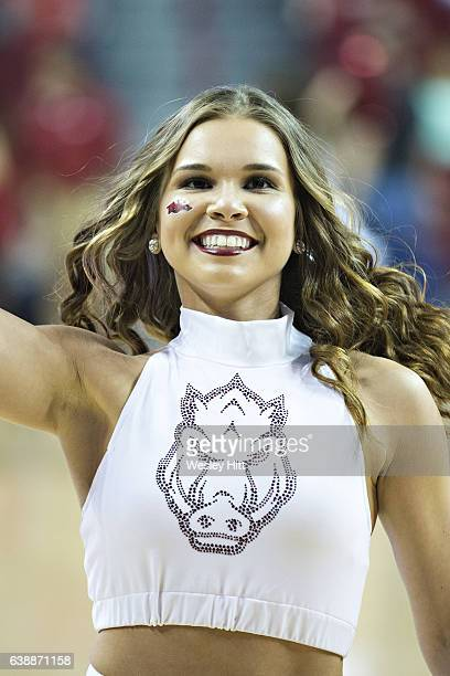 Pom Squad member of the Arkansas Razorbacks performs during a game against the Missouri Tigers at Bud Walton Arena on January 14, 2017 in...