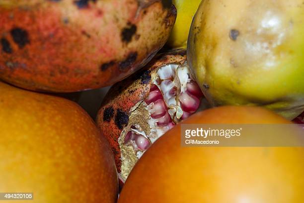 pomegranate - crmacedonio stock pictures, royalty-free photos & images