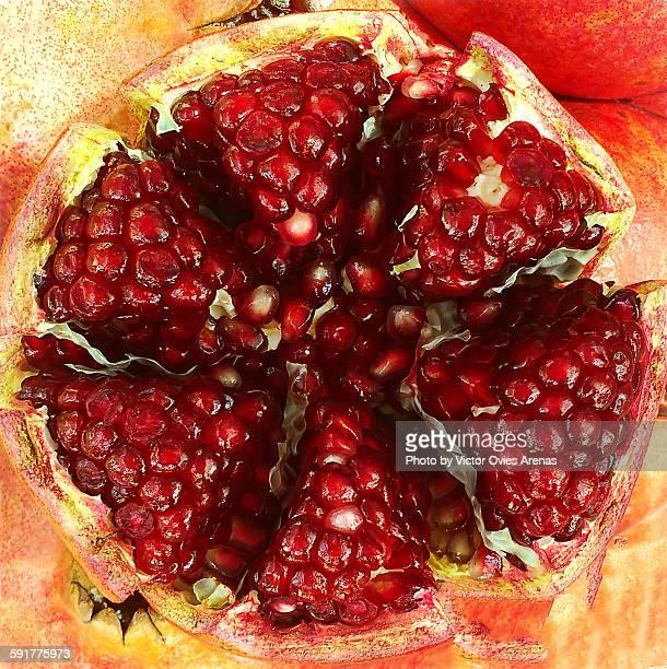 pomegranate - victor ovies fotografías e imágenes de stock